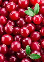 PipingRock Cranberry Supplements